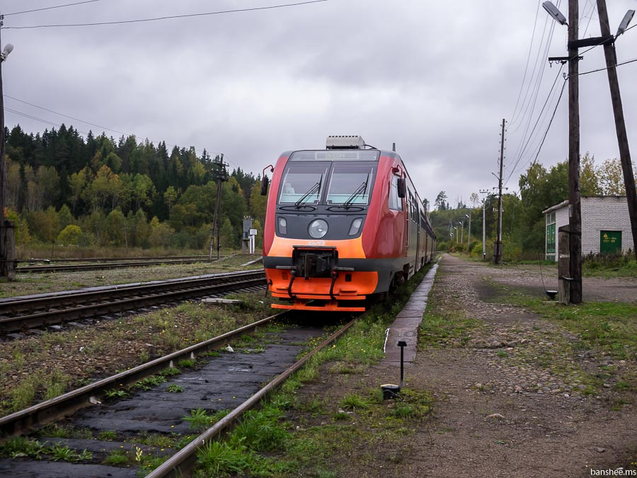P1010144
