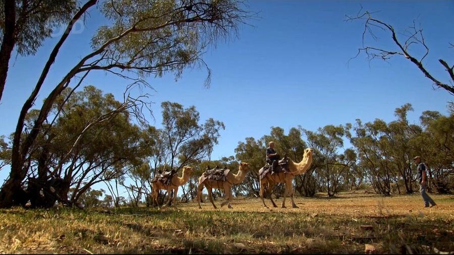 Ch5.Extreme.Railways.2of3.Australias.Outback.Railway.720p.HDTV.x264.AAC.mkv_20160213_182254.781